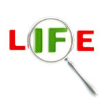 Word life under the magnifier isolated Royalty Free Stock Image