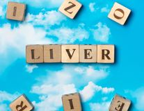 The word Liver royalty free stock image