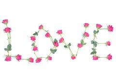 Free Word LOVE Stock Image - 10876821
