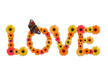 Word Love. Made from flowers on white background Royalty Free Stock Images
