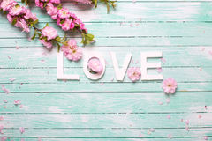 Word love and  border from pink almond flowers on turquoise wood Stock Image