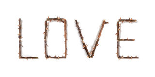 Word love composed of thorny rose stems Royalty Free Stock Image
