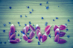 Word LOVE from flower petals Royalty Free Stock Photos
