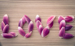Word LOVE from flower petals Royalty Free Stock Image