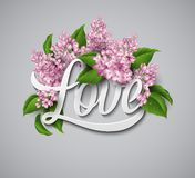 Word Love with flowers. Vector illustration Royalty Free Stock Image