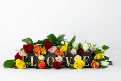 Word love with fresh roses and leaves on white background, front view with copy space. Valentines day or abstract love concept stock images