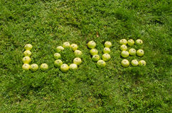 Word love of green apple on garden lawn Royalty Free Stock Image