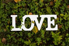 The word love on a green background. A sign that says love. Background and texture Wallpaper to your desktop. the inscription on the grass stock image