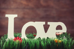 Word love Royalty Free Stock Image