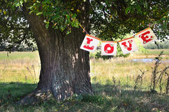 The word Love hanging on the tree. The word Love from red letters beautiful hanging on a large tree in the summer Stock Photography
