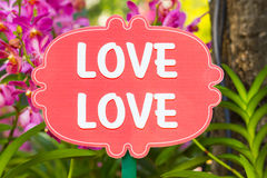 Word Love Love among blurred pink flower in beautiful garden Stock Image