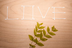 The word LOVE made from cotton bud on wood and leaf texture background  (Retro Filter) Royalty Free Stock Photos