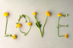 Word LOVE made of yellow flowers on green pastel background. Minimal love concept. Mothers day and Valentine`s Day Flat lay.  stock image