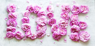 Word love from pink tea roses. On wooden white background Royalty Free Stock Photography