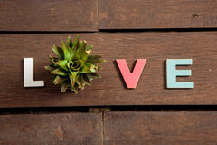 Word love on the wooden floor Stock Images
