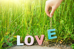The word Love with wooden multi colored letters on natural grass Stock Photo