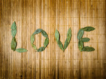 Word love written with leaves Stock Photo