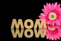 Word mom in cork with daisy Stock Photo