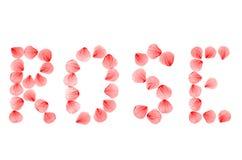 Word NAM geschikt van echte droog toe toenam bloemblaadjes Royalty-vrije Stock Foto's