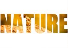 Word NATURE over Mountain agama (Laudakia stellio) basking on a Royalty Free Stock Photography