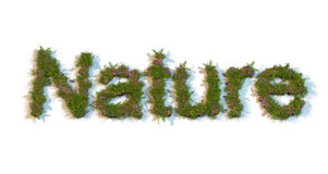 Word Nature typed by flowers and grass Royalty Free Stock Photography
