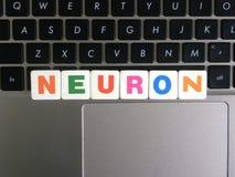 Word Neuron on keyboard background.  Royalty Free Stock Image