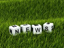 Word news on grass Stock Image