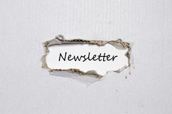 The word newsletter appearing behind torn paper Stock Photography
