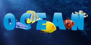 Word OCEAN with many tropical fish Royalty Free Stock Image