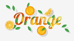 Word orange design decorated with orange fruits and leaves in paper art style. Vector , illustration Stock Photography