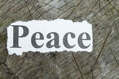 Word peace cut out in a newspaper Stock Photo