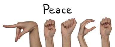 A word of peace shown by hands on an alphabet for the deaf mute. A word of peace shown by hands in English on an alphabet for the deaf mute on a white background royalty free stock images