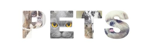 Word pets illustration from photos of cute dogs and cats over white background. The word pets illustration from photos of cute dogs and cats over white Royalty Free Stock Images