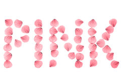 Word PINK arranged from real dry rose petals. Royalty Free Stock Image