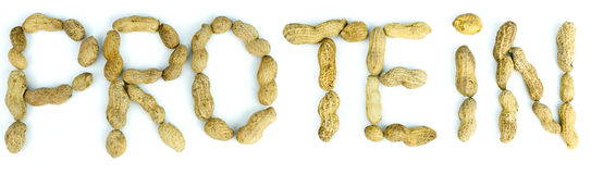 The word Protein Protein from peanuts. The word Protein written using letters made of peanuts on isolated background. High resolution images Stock Photo