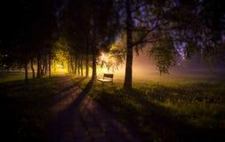 Word randmening van nachtbank in zacht steeg van de mist de donkere boom met lampen en snak schaduwen Royalty-vrije Stock Foto