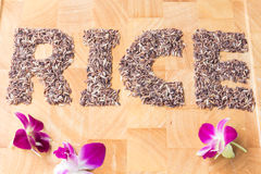 The word rice Royalty Free Stock Photos