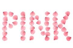 Word ROZE van echte droog wordt geschikt nam bloemblaadjes dat toe Royalty-vrije Stock Afbeelding