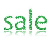 Word of the sale of green leaf, vector Stock Images