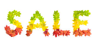 Word SALE made of autumn maple leaves in bright colors Royalty Free Stock Images