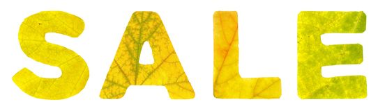 The word sale which is composed of the letters carved of autumn leaves. Isolated on white background, closeup royalty free stock images
