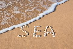 Word sea shell written on beach sand Royalty Free Stock Photo