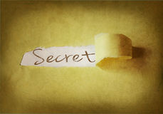 Word secret written under torn strip of paper Royalty Free Stock Image
