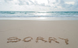 The Word sorry Written in the Sand on a Beach . Royalty Free Stock Photography