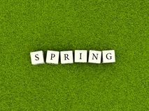 Word spring on blocks Royalty Free Stock Image