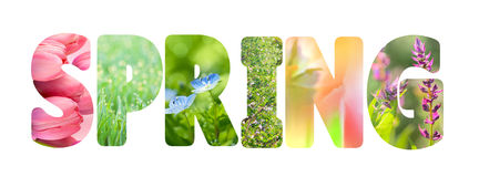 Word Spring with colorful nature photos inside the letters Royalty Free Stock Photos