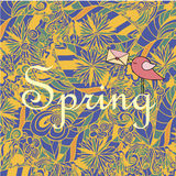 Word Spring in doodle style with a bird. Vector illustration. Stock Photos