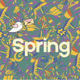 Word Spring in doodle style with a bird. Vector illustration. Royalty Free Stock Photos