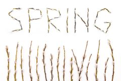 The word spring laid out from the stems of the tree. Flowering willow branches. The approach of spring royalty free stock images