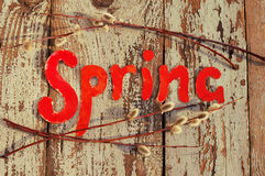 The word spring on an old wooden background with spring branches of a willow Royalty Free Stock Images